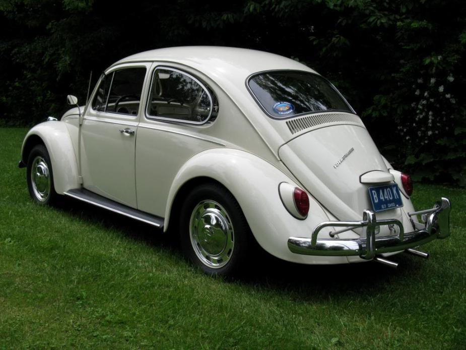 Featured '67 Beetle — Rebecca Maindonald