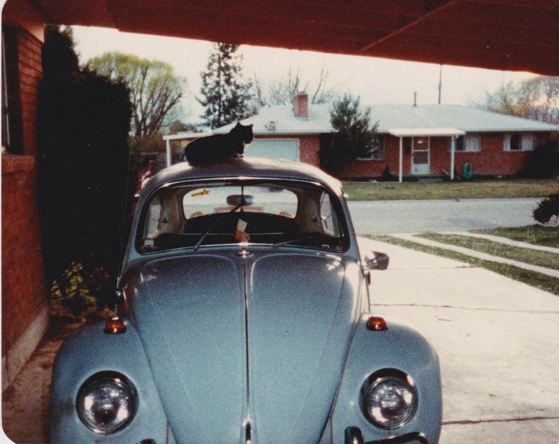 The original Fritz 1983-sm