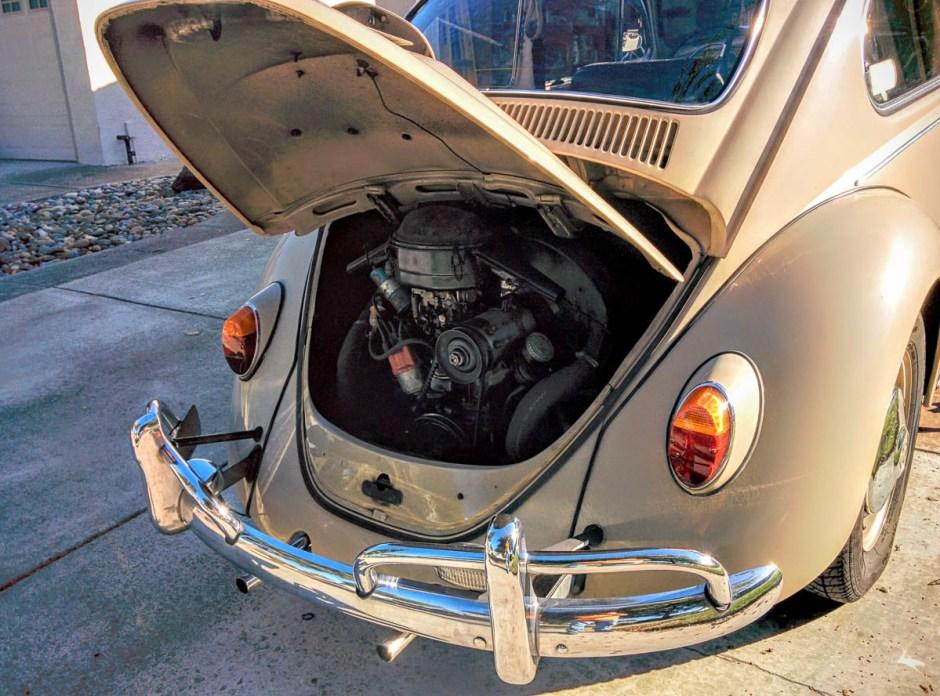 1967_bug-17