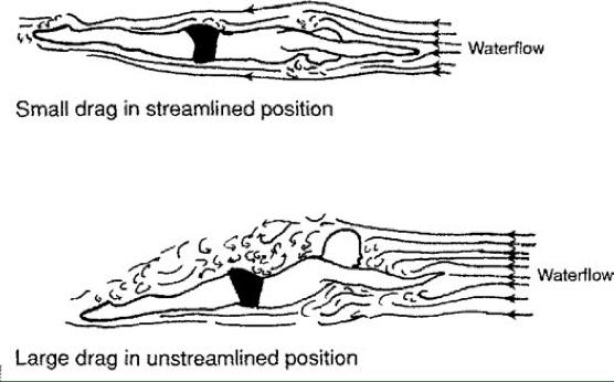 analisis biomecanico de la natacion