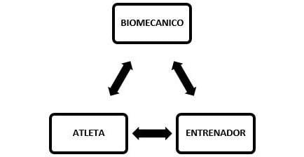 triangulo pedagógico Biomecanico-Entrenador-Atleta