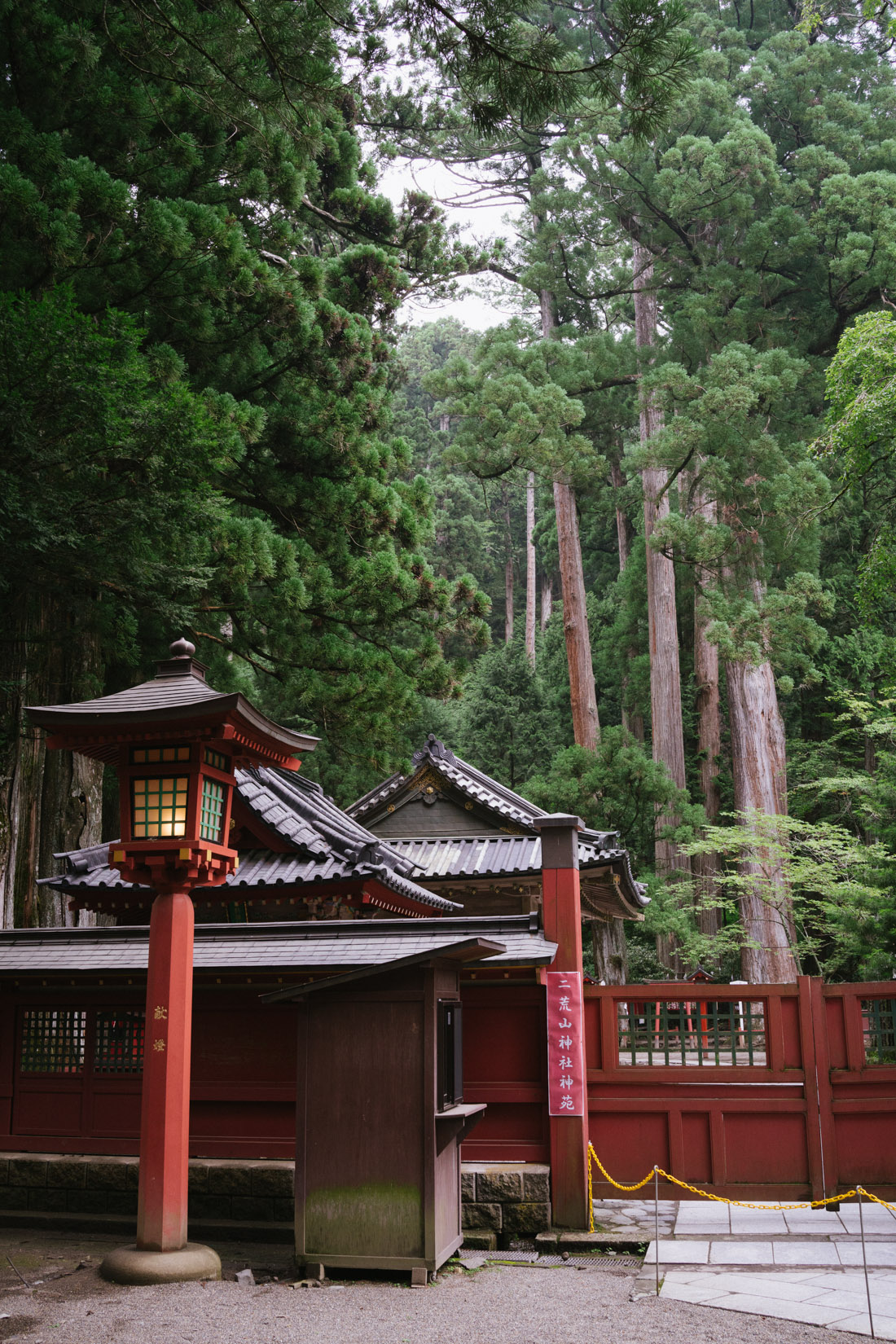 Futarasan shrine is literally surrounded by forest on all sides.
