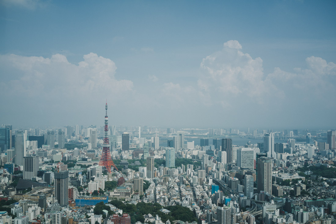 The unmissable, one-of-a-kind, Tokyo Tower on the left.
