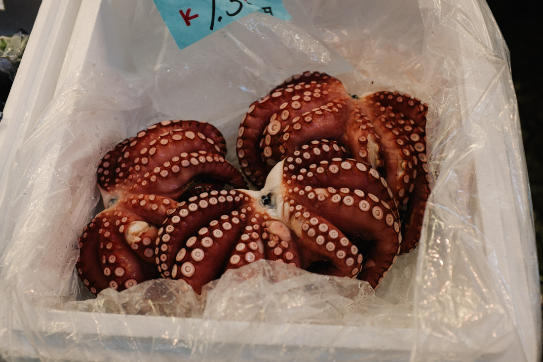 Good looking octopus.