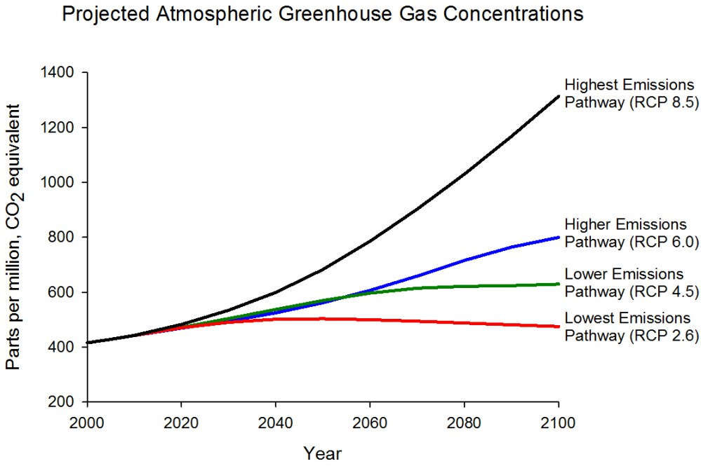 medium resolution of graph displaying projected ghg concentrations for four different emissions scenarios highest rcp 8 5