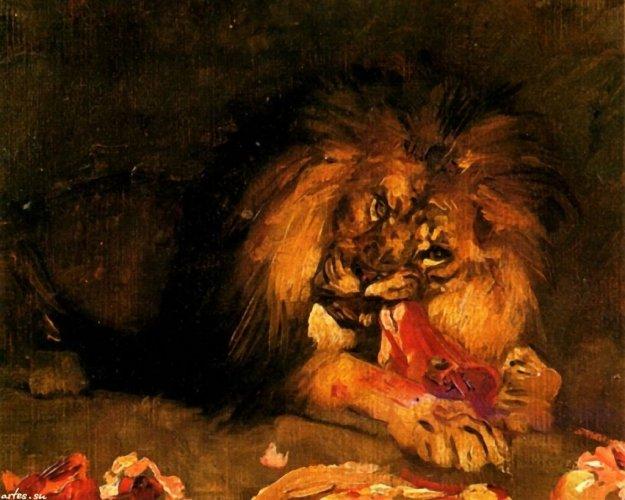 lion_surand