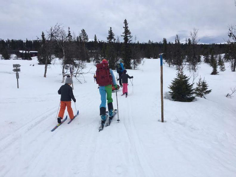 Skvaldra ski