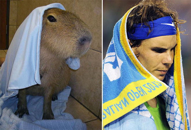 Nadal and his double.