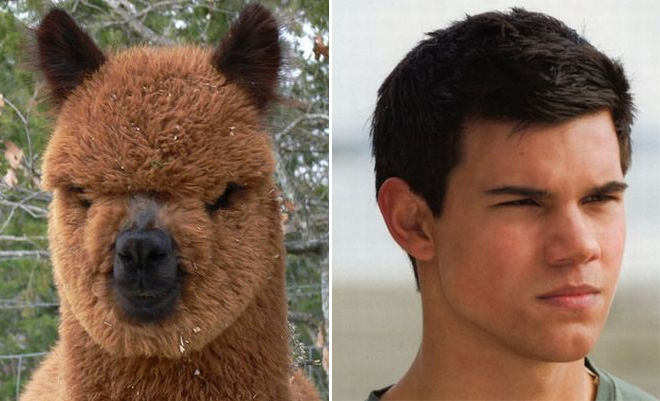 They must be related.