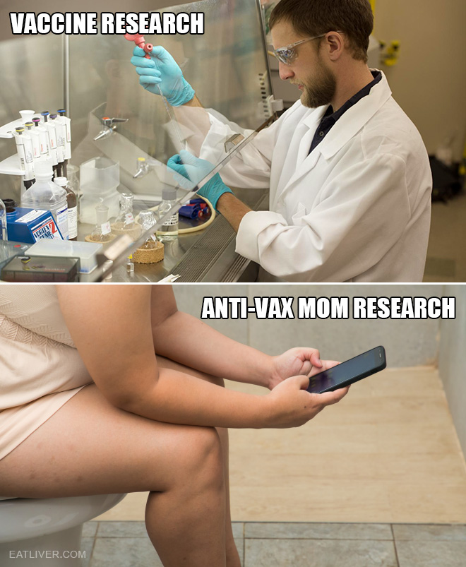 Vaccine research process.