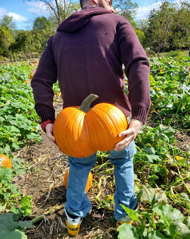 Hilarious butt-shaped Halloween pumpkin.