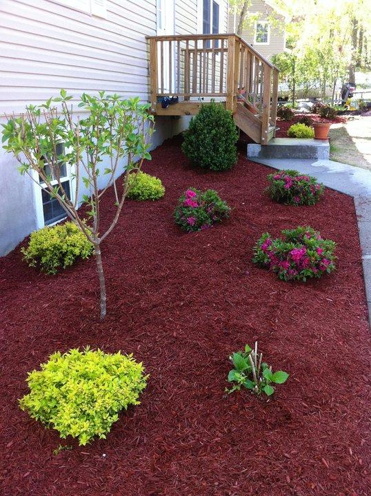 mulch beds bring color and health