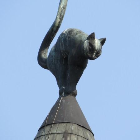 Mái nhà của mèo