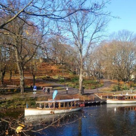 Công viên 2