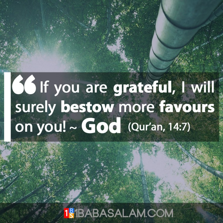 Be Grateful and Receive More Bounties - 1BabaSalam.com