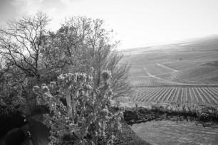 View from Château Saran