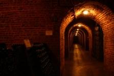 Cellar C025
