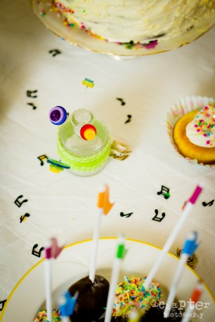 Camille Smashing Cake Birthday by 1Chapter Photography-19