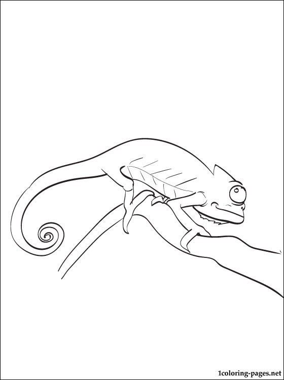 Chameleon Coloring Page To Print Out Coloring Pages