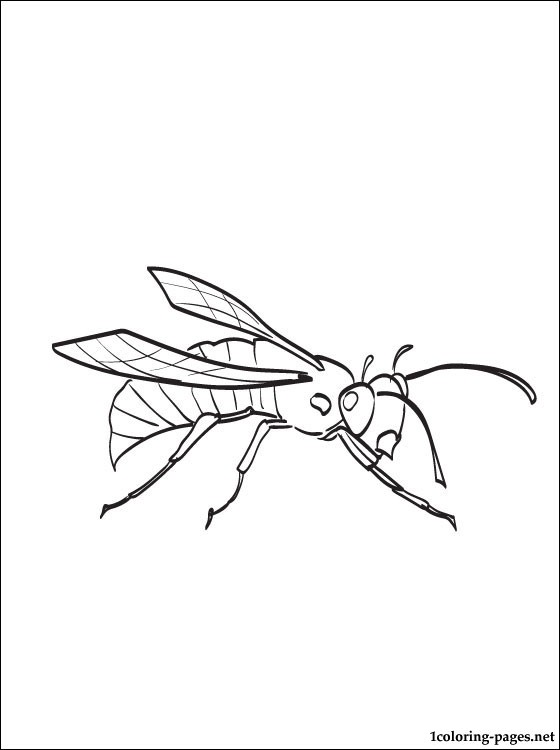 Hornet Coloring And Printable Page Coloring Pages