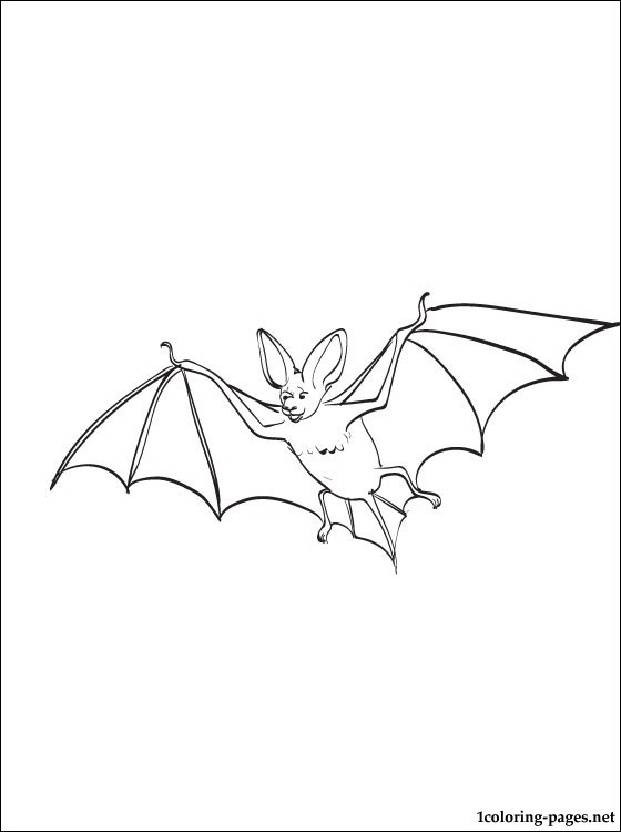 Vampire Bat coloring page to print out Coloring pages