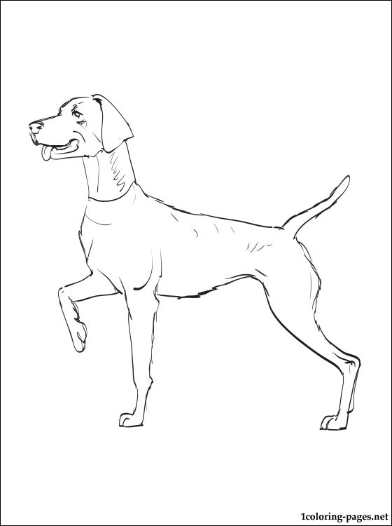 Dog Breed Coloring Pages Auto Electrical Wiring Diagram