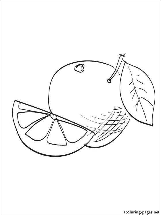 Grapefruit Coloring Page To Print Out Coloring Pages