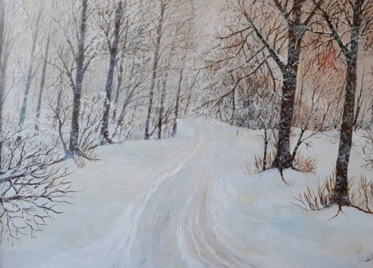 Exmoor snow by Mark Noble