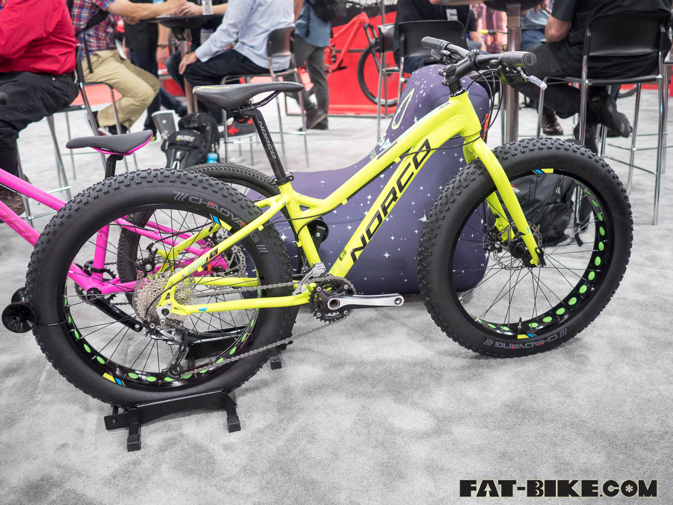 fat bikes on the