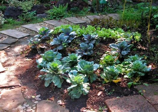 сад в стиле кантри 1