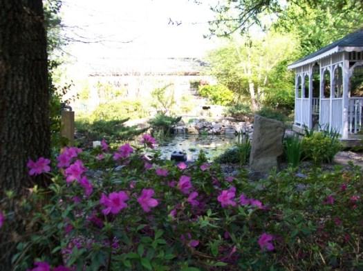 красивые уголки сада - вид на пруд