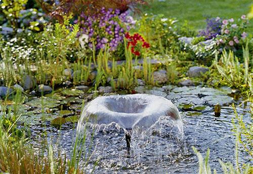 искусственный пруд с ирисами