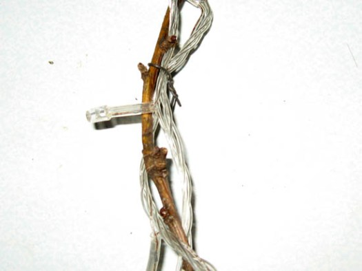 Закрепленная гирлянда на ветке
