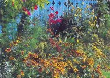 Растения и кустарники для живой изгороди 11