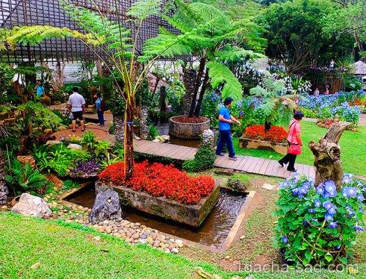 красивый сад Mae Fah Luang (25)