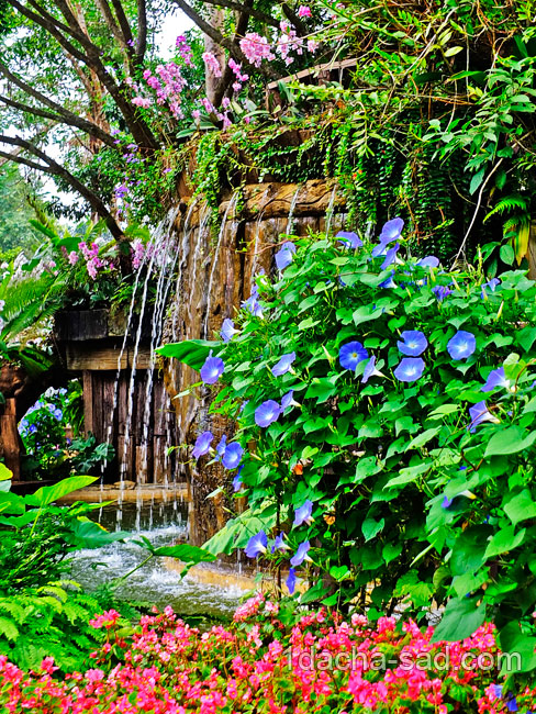 красивый сад Mae Fah Luang (23)