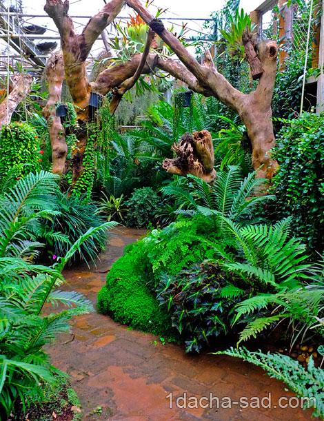 красивый сад Mae Fah Luang (16)