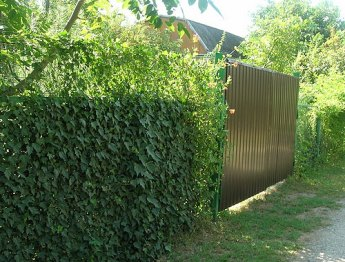 Как закрыть забор из сетки