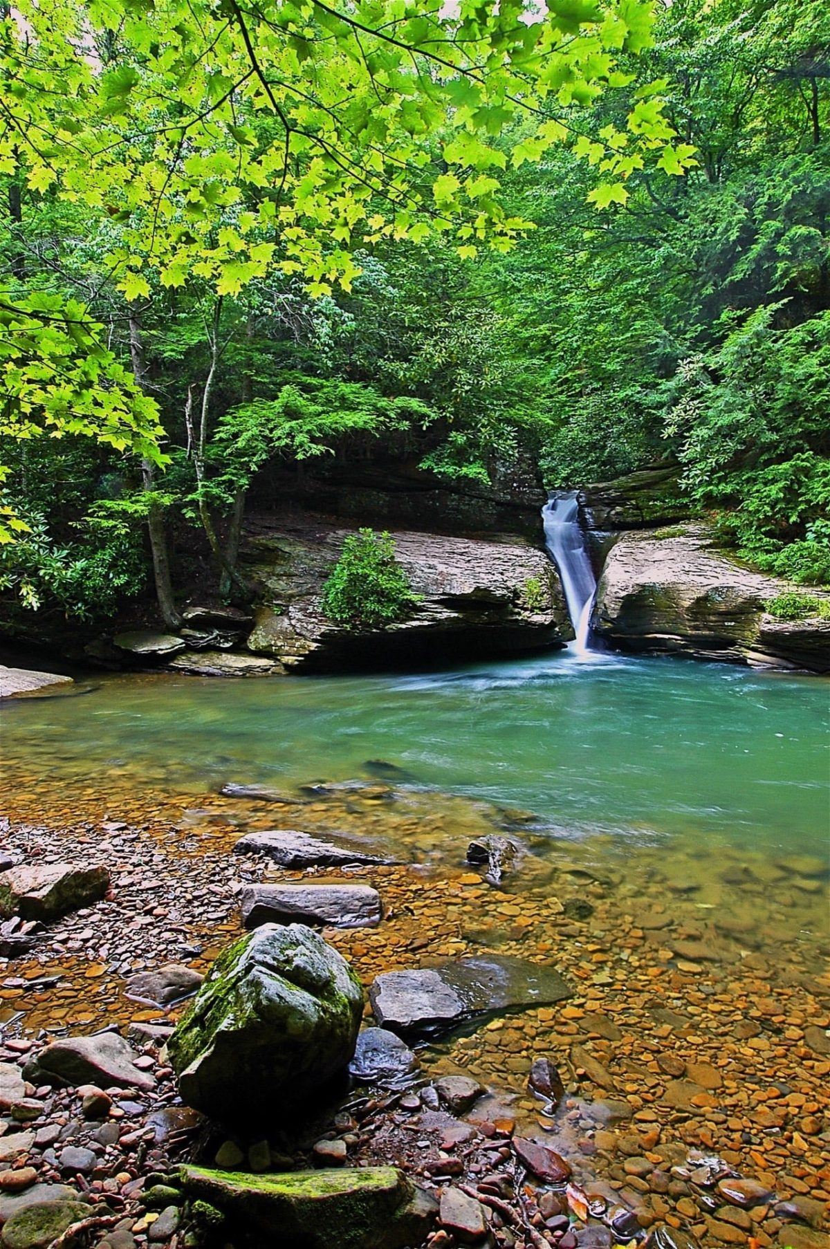 Holly River State Park  West Virginia State Parks  West