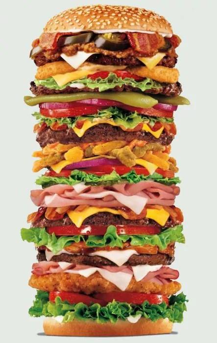 Fat Content Mcdonalds Hamburgers