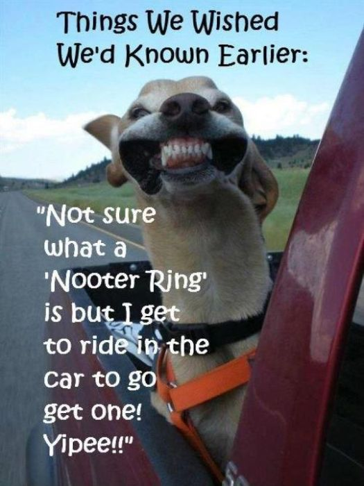 Nooter Ring
