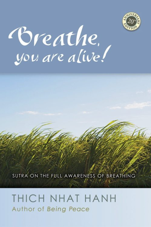 Discourse on the Full Awareness of Breathing | Plum Village
