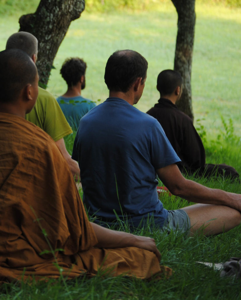 The Plum Village Tradition Of Zen Master Thich Nhat Hanh