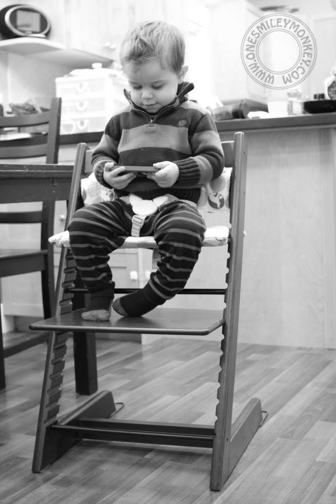 stokke chair harness xkcd office tripp trapp high review