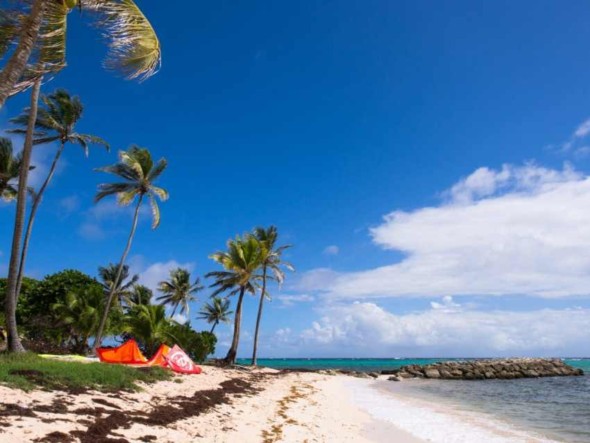 marie galante, guadeloupe, paysage, capesterre, plage feuillère
