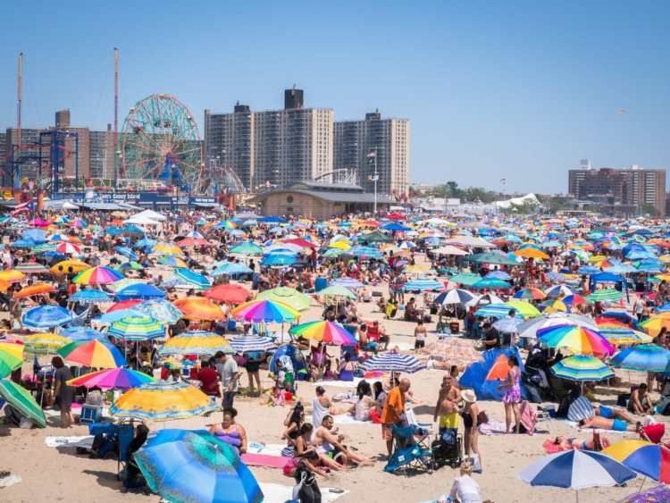 coney island, new york, brooklyn, hotdog, états unis