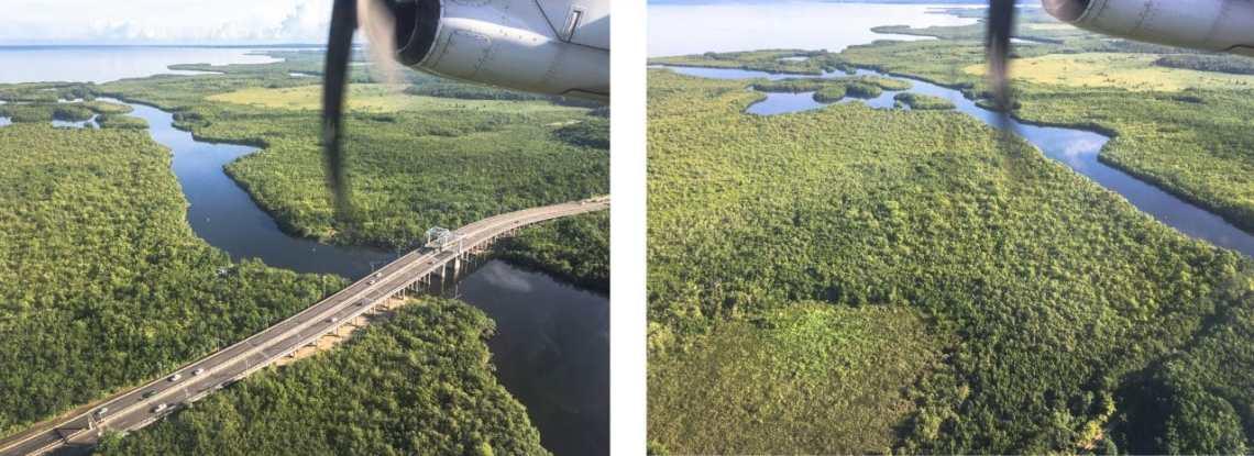 guadeloupe, mangrove, basse terre