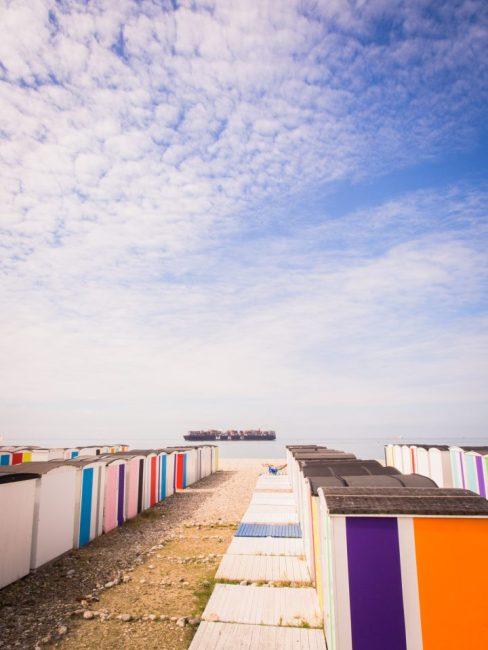 le havre, un été au havre, normandie, port, grandes voiles