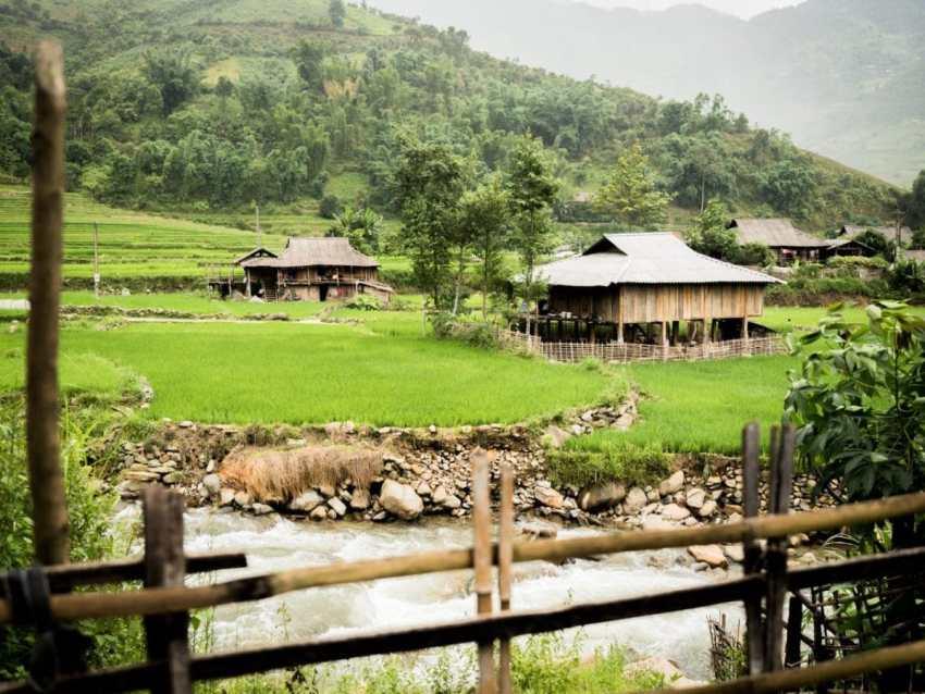 maison sur pilotis, lim thai, lim mong, vietnam, rizières