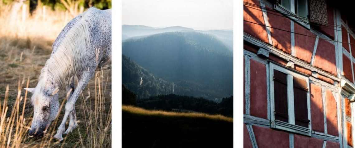 alsace, vosges, architecture, montagne, moissons